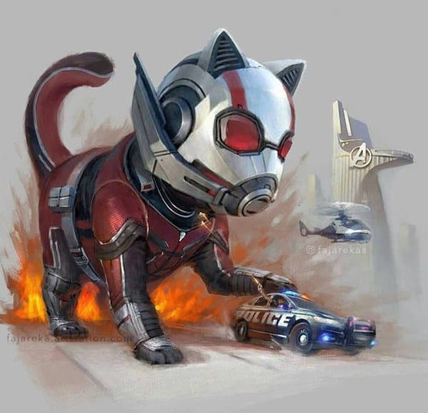 ant-man-cat
